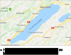 carte-googlemap-de